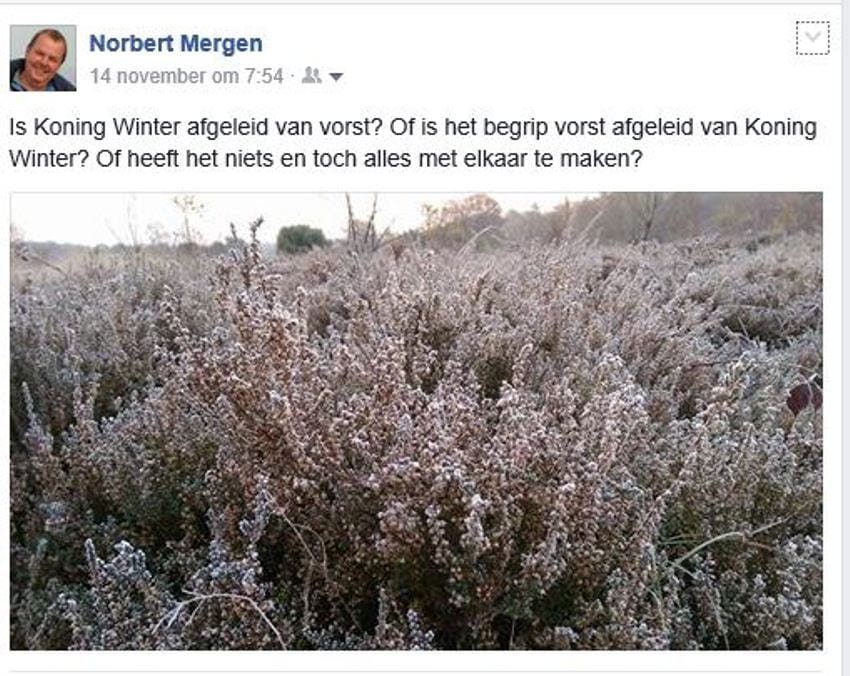 koning-winter-facebook-het-begin